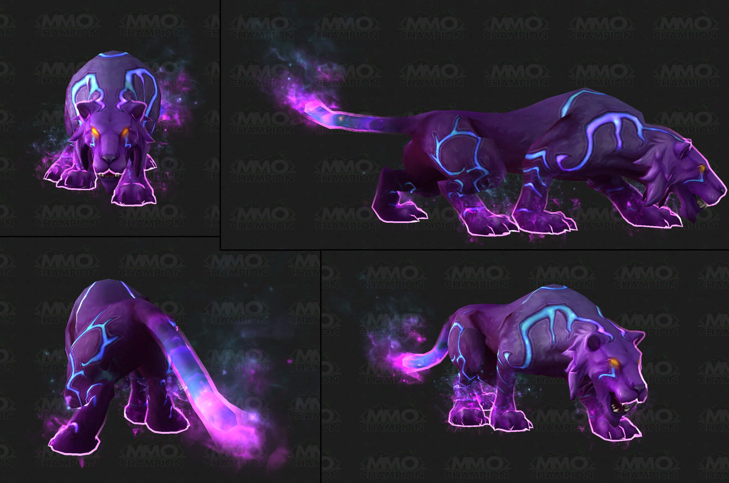Can You Get The Ghost Cat In Legion Still