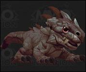 BabyKomodoDragon001.jpg