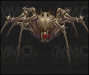 BoneSpider2006.jpg
