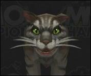 Cat2001.jpg