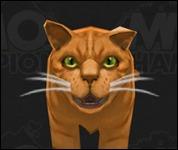 Cat2002.jpg