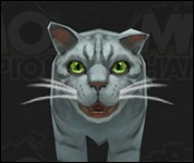 Cat2003.jpg
