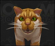 Cat2006.jpg