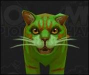Cat2007.jpg