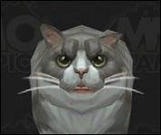 Cat2Large2.jpg