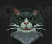 Cat2Shaggy1.jpg