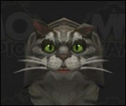 Cat2Shaggy2.jpg