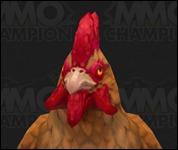 Chicken2019.jpg