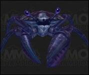 Crab2007.jpg