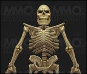 DwarfSkeleton003.jpg