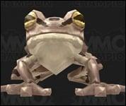 Frog2001.jpg