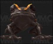 Frog2021.jpg
