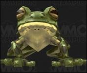 Frog2022.jpg