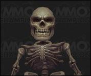 GnomeSkeleton004.jpg