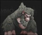 Gorilla2008.jpg