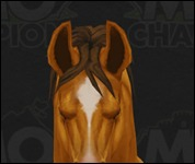 Horse3025.jpg