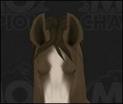 Horse3029.jpg