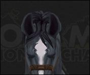 HorseMultiSaddle005.jpg