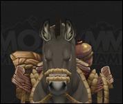 HorseMultiSaddle007.jpg