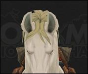 HorseMultiSaddle011.jpg