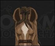 HorseMultiSaddle025.jpg