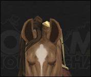 HorseMultiSaddle026.jpg