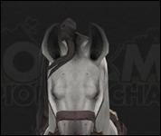 HorseMultiSaddle027.jpg