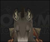 HorseMultiSaddle031.jpg