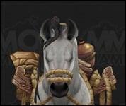 HorseMultiSaddle034.jpg