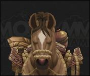 HorseMultiSaddle035.jpg