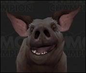 Pig2002.jpg