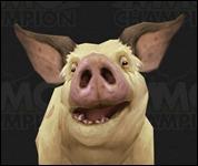 Pig2004.jpg