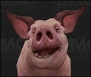 Pig2006.jpg