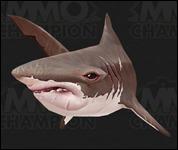 Shark2009.jpg