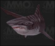 Shark2025.jpg