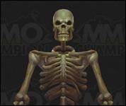 Skeleton2002.jpg