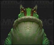 ToadLoa_Small001.jpg