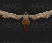 Vulture019.jpg