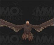Vulture029.jpg