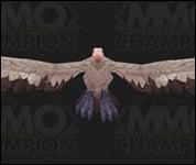 Vulture030.jpg