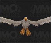 Vulture033.jpg