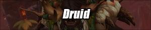 druidbanner.jpg